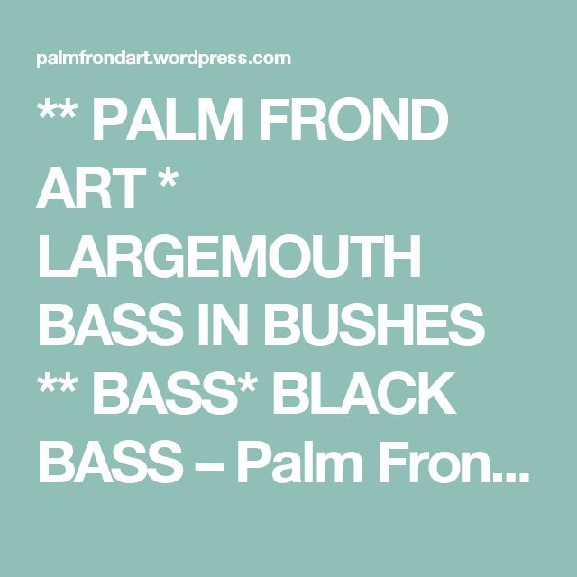 ** PALM FROND ART * LARGEMOUTH BASS IN BUSHES ** BASS* BLACK BASS – Palm Frond Art by Dale Werner (239) 200-9090