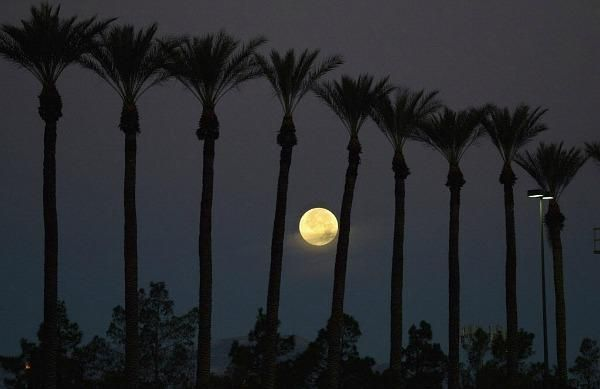 """CSMonitor.com (July 2014)  The FULL MOON names and dates for 2014:  Full Wolf Moon Jan. 15, Full Snow Moon Feb. 14, Full Worm Moon Mar. 16, Full Pink Moon Apr. 15, Full Flower Moon May 14, Full Strawberry Moon June 13, Full Buck Moon July 12, Full Sturgeon Moon Aug. 10, Full Harvest Moon Sept. 8, Full Hunters' Moon Oct. 8, Full Beaver Moon Nov. 6, and Full Cold Moon Dec. 6.  July's full moon was also called """"Thunder Moon"""" because it occurred at the time of year when thunderstorms are…"""