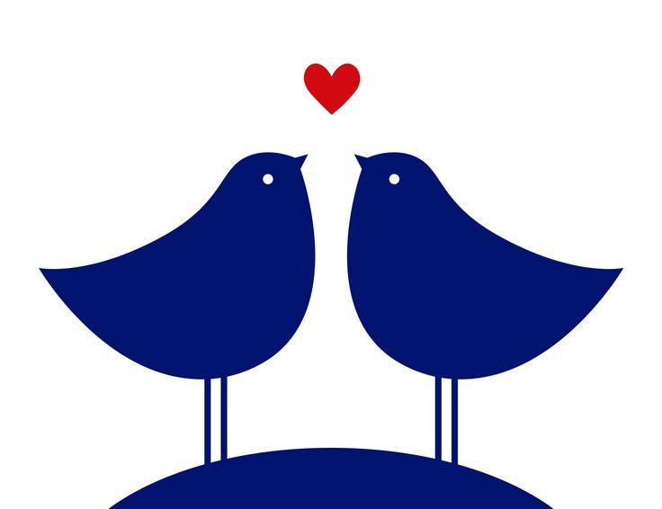 Kissing birds #tagdeskusses #kissingday #kiss #love #nivea #heart