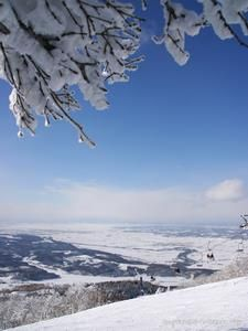 Kamui ski Lynx. Looking for more information aboout Hokkaido? Go Visit Asahikawa City. http://www.city.asahikawa.hokkaido.jp/