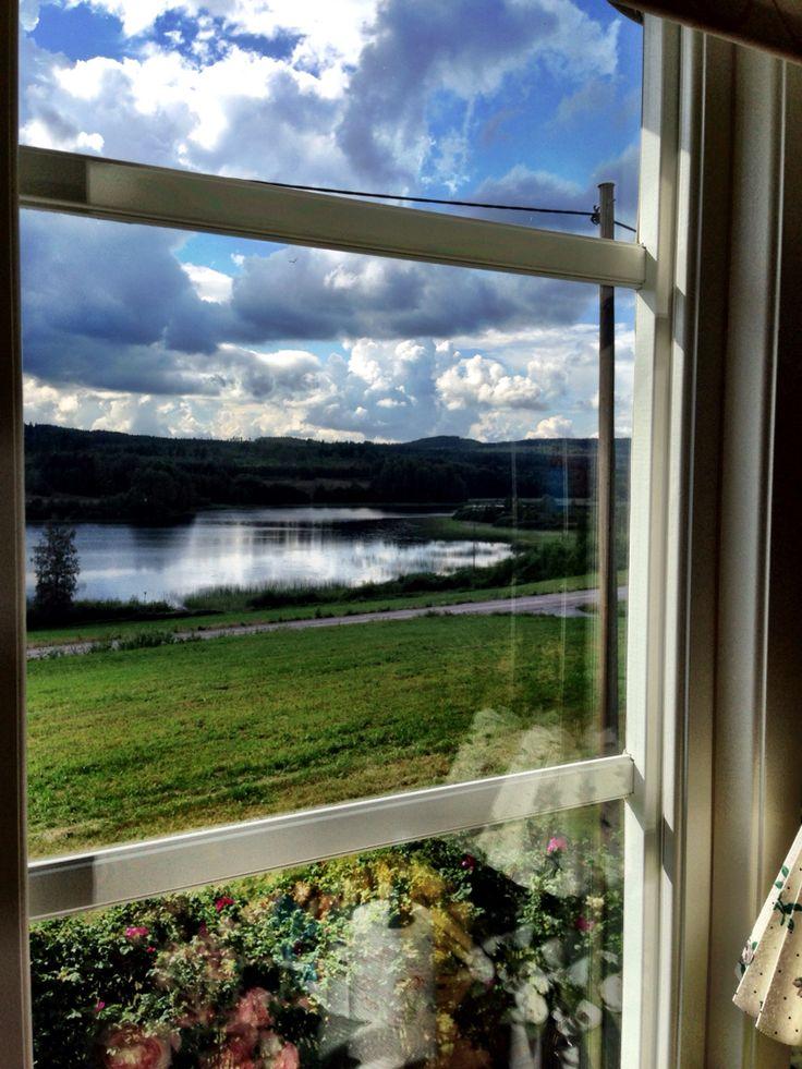 Från mitt köksfönster