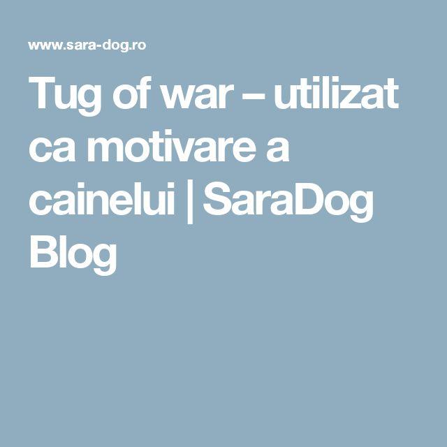 Tug  of  war – utilizat ca  motivare a cainelui | SaraDog Blog