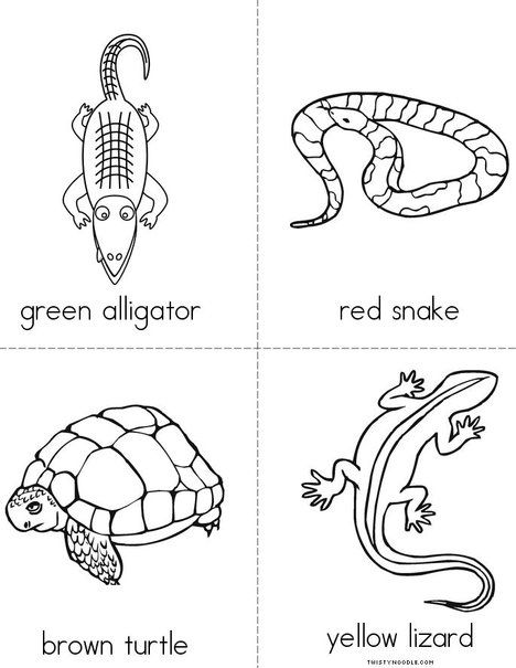 Color the reptiles Mini Book from