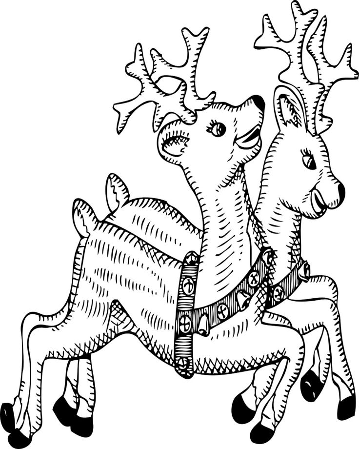 free christmas coloring pages for kids get your crayons and color christmas pictures printable coloring pages christmas coloring pages at squiglys - Free Christmas Pictures To Print 2