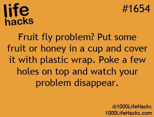 One for those fruit lovers, fly haters, out there.