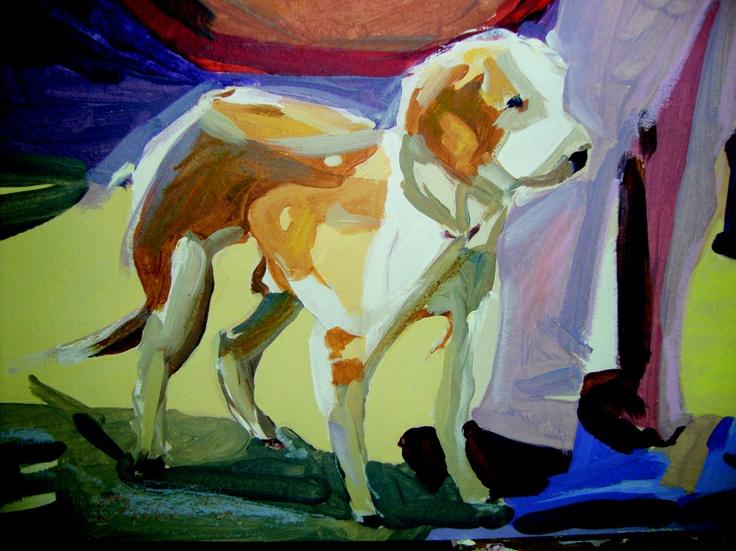 Cão perdigueiro