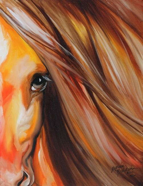 SIENNA SUNRISE EQUINE EYE Art Prints by Marcia Baldwin - Shop Canvas and Framed Wall Art Prints at Imagekind.com