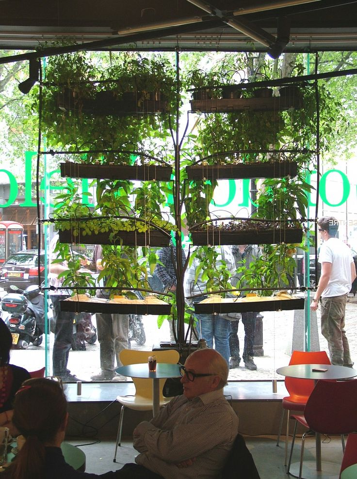 The Urban Agriculture Curtain. Photo: Bohn & Viljoen Architects