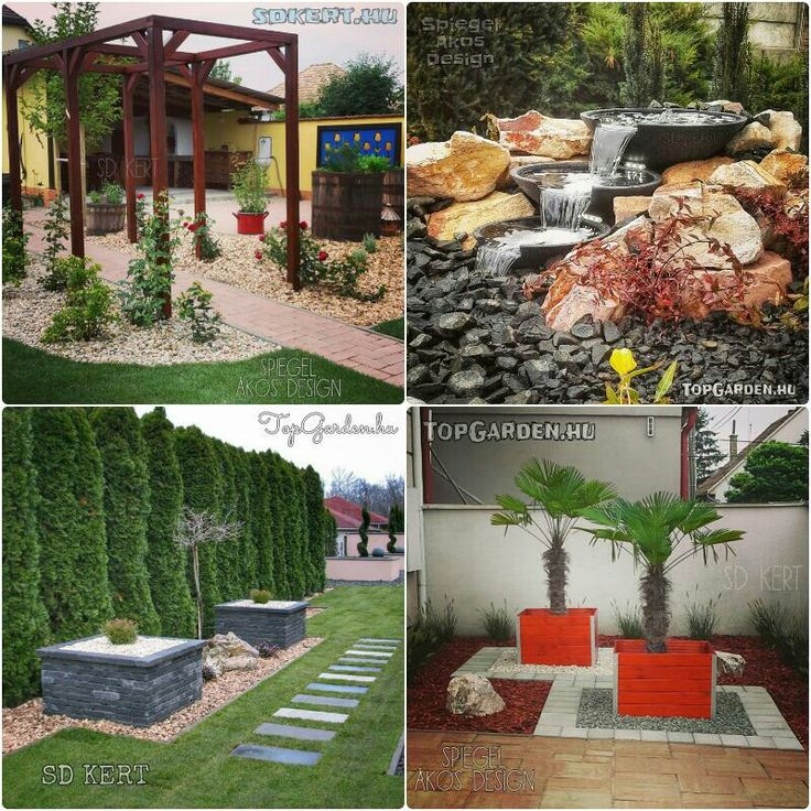 #gardendesign #gardening #gardendesigner #garden