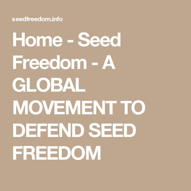 Home - Seed Freedom - A GLOBAL MOVEMENT TO DEFEND SEED FREEDOM