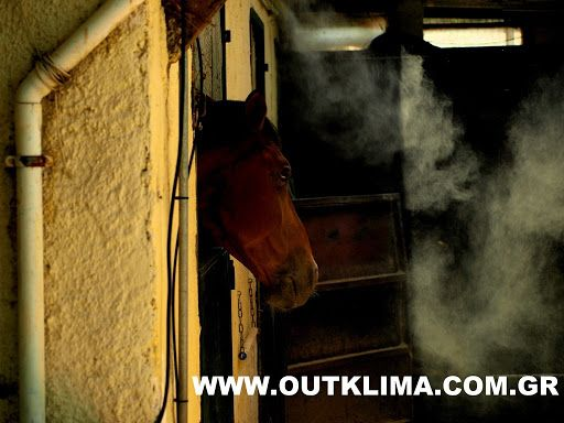 ΥΔΡΟΝΕΦΩΣΗ horce cooling by outklima.gr
