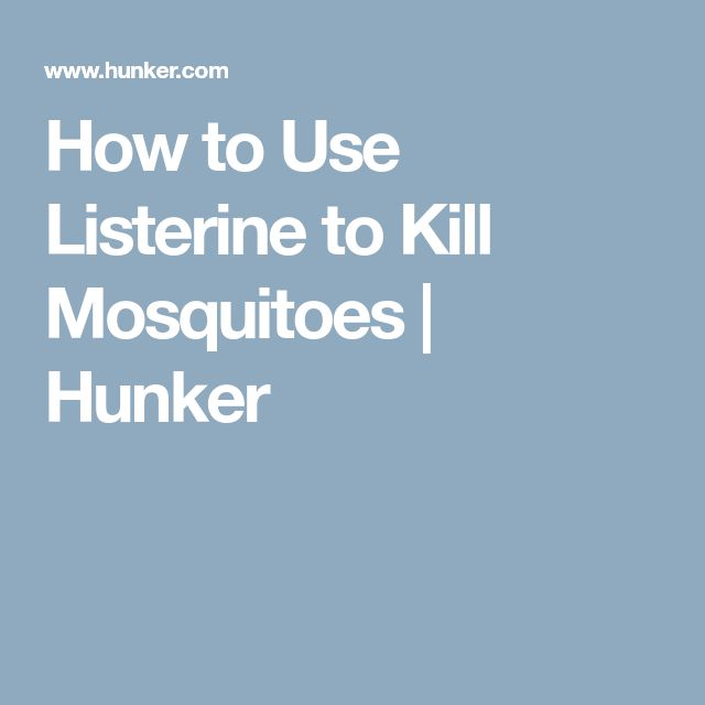 How to Use Listerine to Kill Mosquitoes   Hunker