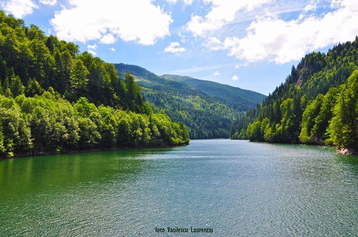 Lacul baraj Petrimanu - Muntii Lotroului
