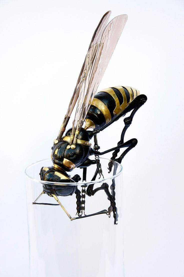 New Animal and Insect Assemblages Made from Repurposed Objects by Edouard Martinet