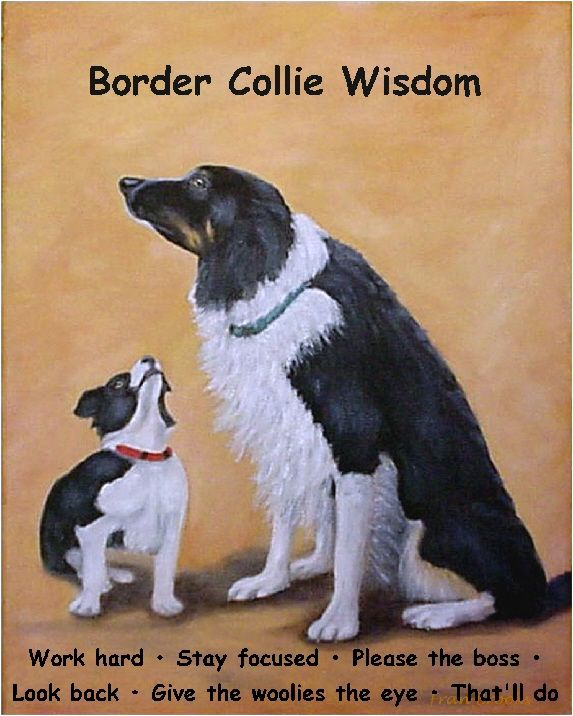 Sammy and Breagh with some Border Collie Wisdom by artist, Fran Brooks www.artistnannie.com