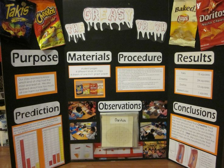 Potato Chip Science Experiment The Science Fair And