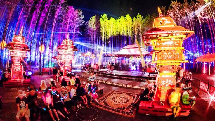 7 Best Electric Forest Ideas Images On Pinterest