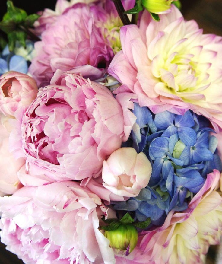 Love this arrangement.Beautiful Flower, Blue Flowers, Colors, Flower Power, Bloom, Bridal Shower, Wedding Flower, Pink Peonies, Neon Yellow