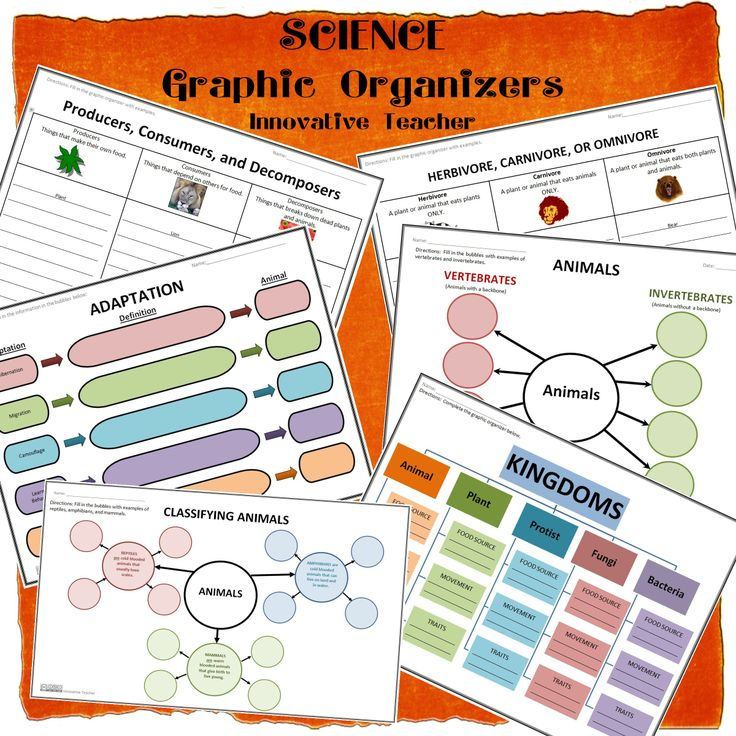 Innovative Classroom Teaching ~ Best images about templates worksheets on pinterest