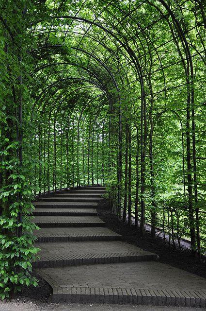El paso en el jardín de Alnwick Castle , Northumberland, Inglaterra
