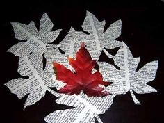 fall book displays leaves - Google Search