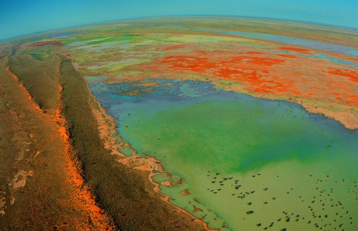 Flooded Australian outback: Flooded Australian, Australian Flood, Outback Places, Amazing Colors, Inspirational Places, Flooded Outback, Amazing Nature, Photo, Australian Outback