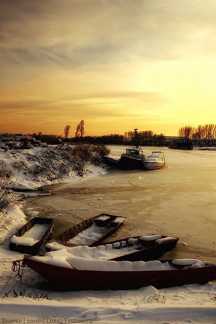 Banat, Serbia - winter on the Danube