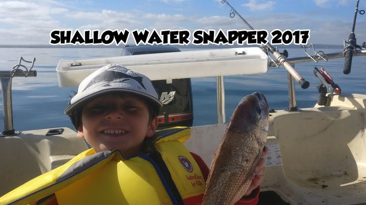 Port Phillip Bay Snapper Melbourne Fishing  Shallow Water No Wind No Worrys
