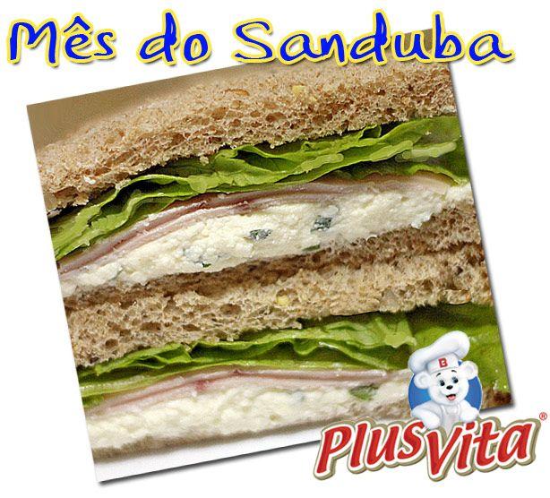 PANELATERAPIA - Blog de Culinária, Gastronomia e Receitas: Sanduíche Natural de Queijo Branco