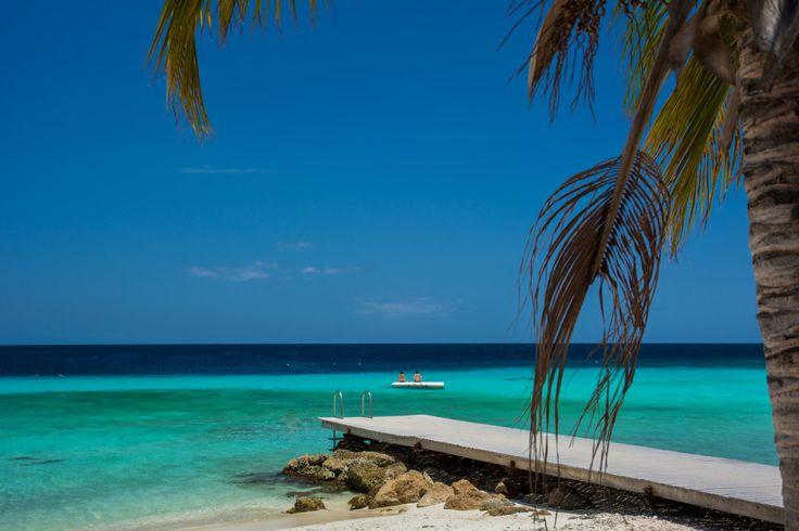 Jeśli zastanawiasz się co warto zobaczyć na Dominikanie to wiedz, że jest to jedno z niewielu miejsc na świecie gdzie nie ma możliwości pomyłki. Rajski klim