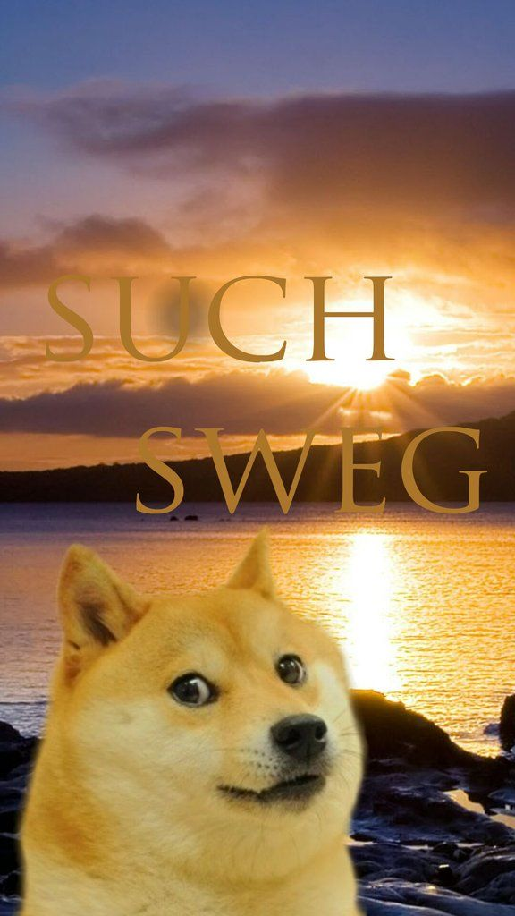 0cd7496b1acab2c5f326f5cc7c1b91c3 doge memes 11 best doge images on pinterest doge, wallpaper backgrounds and,Meme Iphone Background