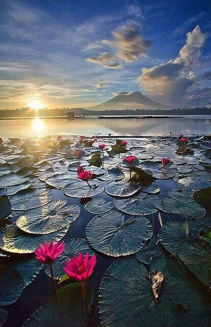 Lago Sampaloc en Filipinas