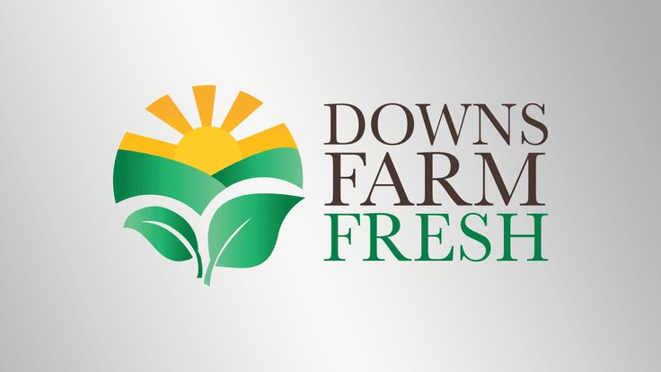 Logo design for Downs Farm Fresh, QLD