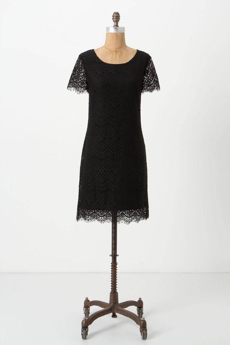 Sasha Lace Shift: Lace Shift, Anthropology Lace, Shift Dresses, Sasha Lace, Anthropologie Com, Anthropologie Lace, Little Black Dresses, Sweet Dresses, Lace Dresses