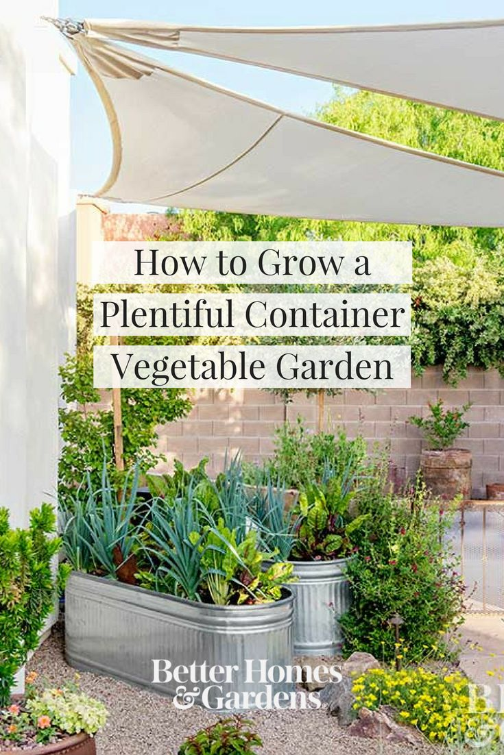 There is nothing more rewarding than home-grown vegetables and surprisingly, vegetables do well in containers. Experience the flavor and freshness of home-grown veggies with these helpful tips. #growyourown #gardening #vegetablegarden