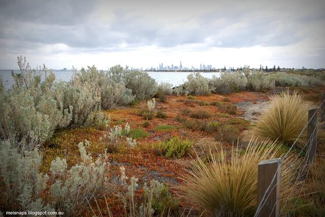 Melbourne Snaps: Melbourne Across the Bay