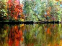fall leavesLeaves Fall, Leaves Reflections, Autumn Fall Halloween, Nature'S Painting, Fall Nature, Fall Leaves Pictures, Image Painting, Art Fall, Leaves Nature