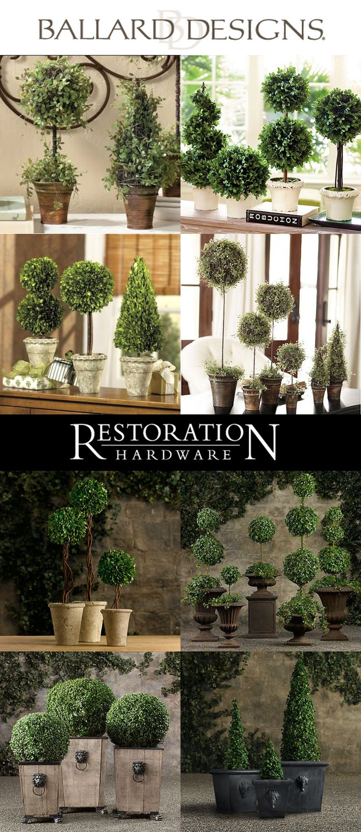 Designer topiaries.   Ideas for when I make my own.