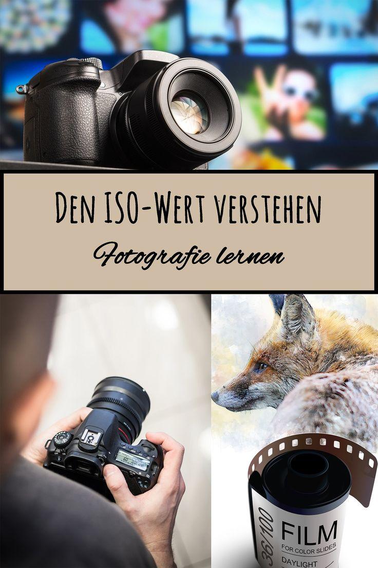 Den ISO-Wert verstehen (Grundwissen Fotografie)