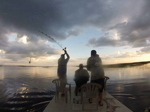Alligator Hunting on a the Dargel Flats Boat at camp Bocachobee