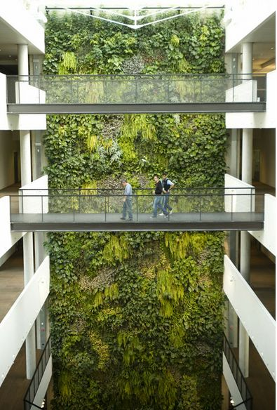 have a flower/plant wall for a Garden promotion. Image via Diesel (their office)