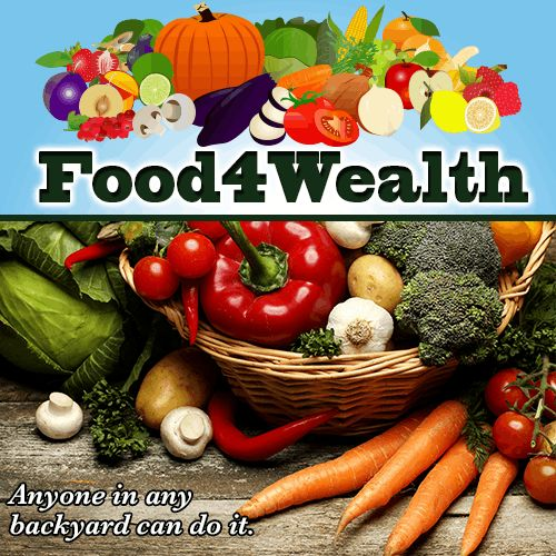 #Organic #Food4Wealth Everything you need to know to grow healthy, fresh organic food! http://242babyhs7ghun7bhdugclemfs.hop.clickbank.net