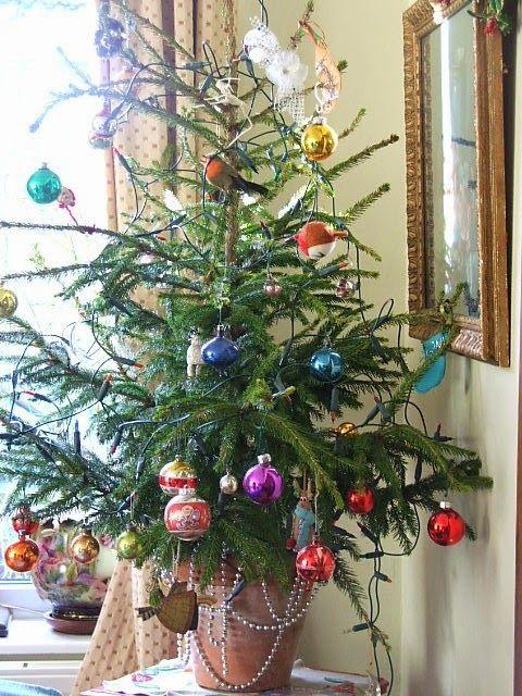 Pretty Christmas Tree...