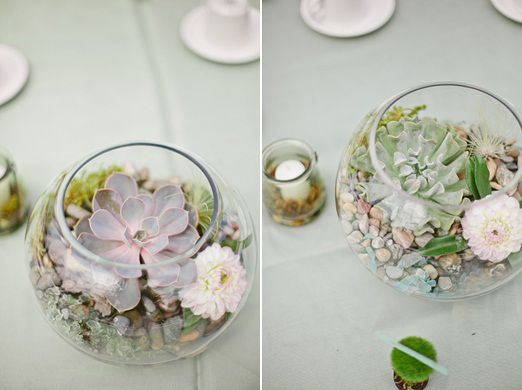 Image result for paint can terrarium
