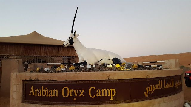 مخيم المها العربي Arabian Oryx Camp Arabian Oryx Arabians Decor