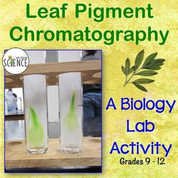 paper chromatography for student research Chromatography research paper yesterday, does homework help or hurt student learning, how can we help the homeless essay.