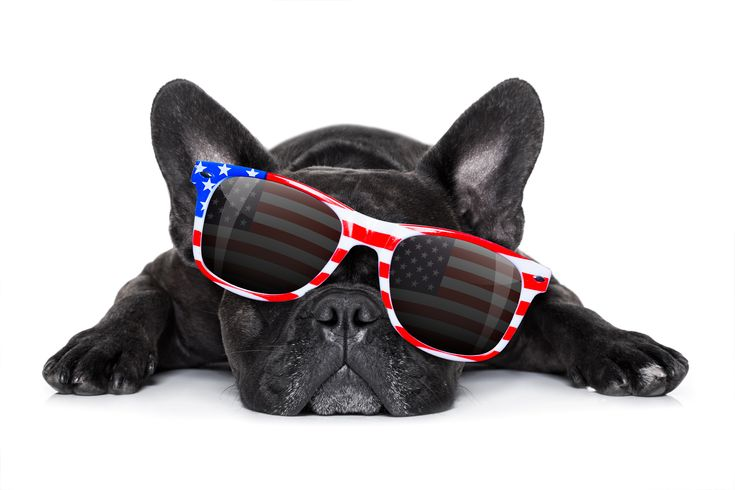 Have a safe holiday, from our family to yours!! Keep you and your pups hydrated today!!   Do you know the warning signs of heat exhaustion? Know the signs it happens quickly!!  ~Rapid panting ~Bright red tongue ~Red or pale gums ~Thick, sticky saliva ~Depression ~Weakness ~Dizziness ~Vomiting - sometimes with blood ~Diarrhea ~Shock