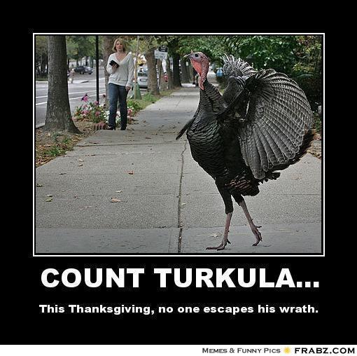 Count Turkula