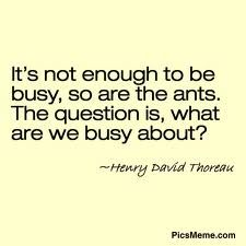 """""""It's not enough to be busy, so are ants. The question is, what are we busy about?"""" -Henry David Thoreau"""