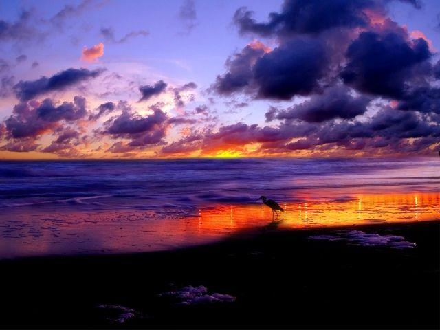 картинки с маяком и закатом - Поиск в Google